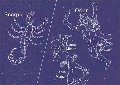 constelação de escorpião e órion no céu