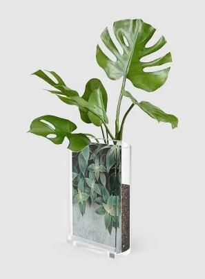 presente para casa nova - porta retrato vaso