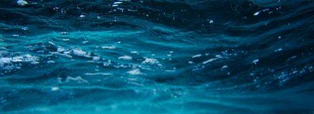 Signos de Água: quais são e suas características!
